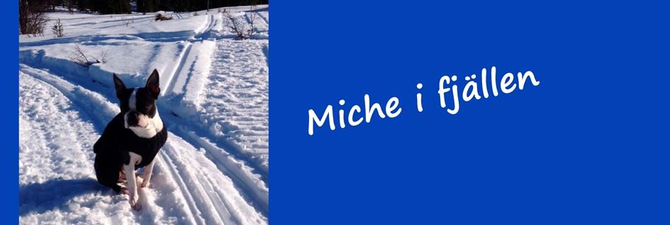Miche--mars