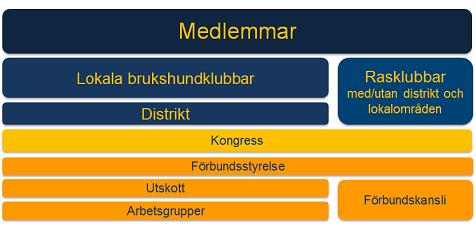 SBKs organisation
